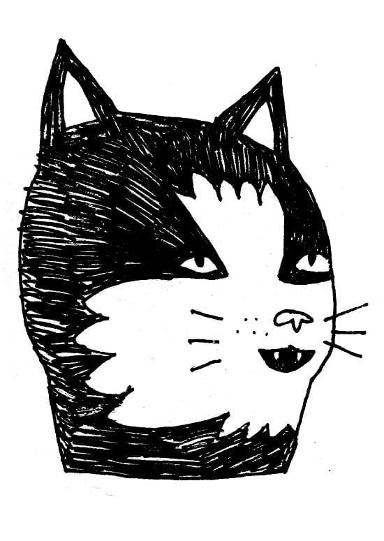 kidacne_catsketch_c