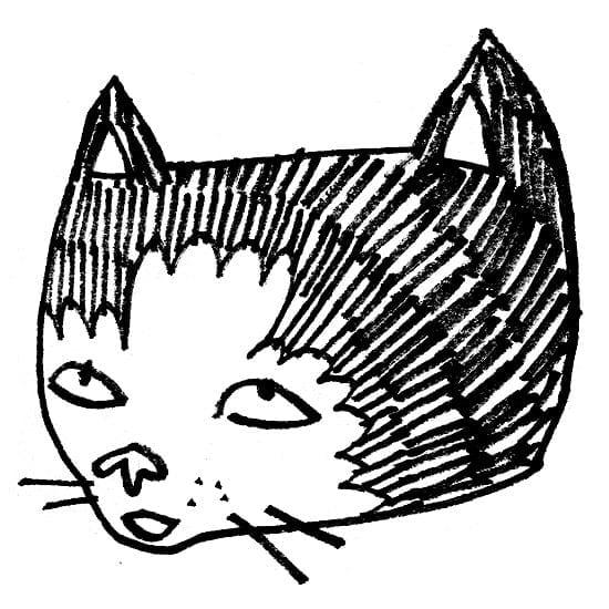 kidacne_catsketch_d