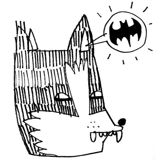 BatSignal_550_KidAcne
